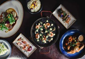 Tam Food (300 x 210)