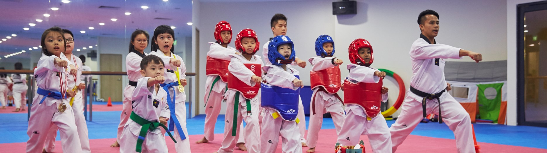 Taekwondonomics 1870x525