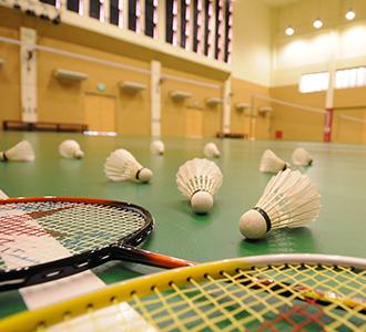330x300 badminton