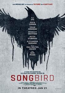 Songbird_A4_Poster210x300