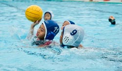 FINS-Junior-Water-Polo-2
